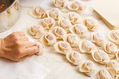 Making of Traditional Chinese dumpling