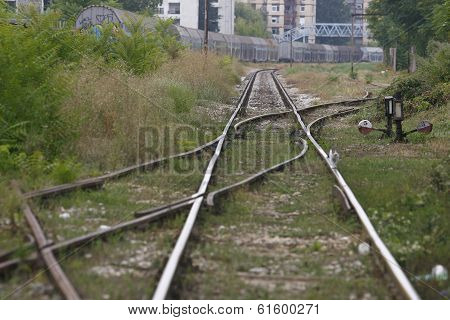 Railway Track In A Green Forest