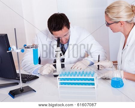 Technologists At Work In A Laboratory