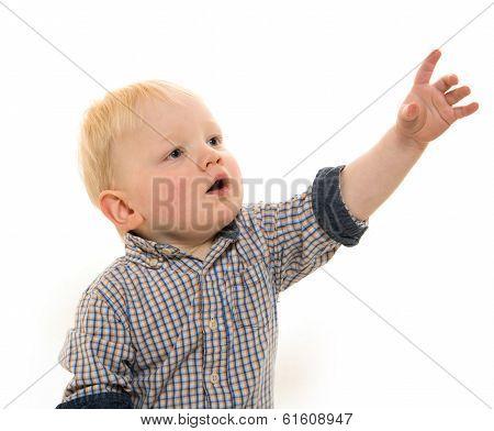 Little Boy On White Background