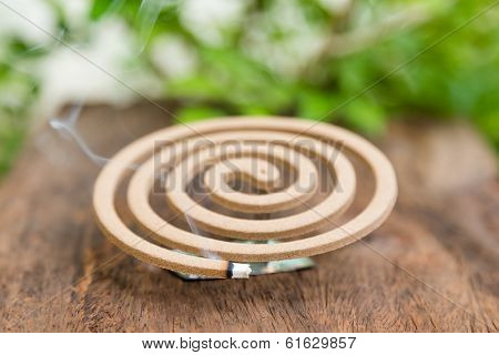 Burning Mosquito Coil