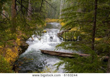 Cênica Rogue River - Oregon