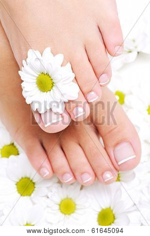 Clean and well-groomed female feet with beautiful toenails