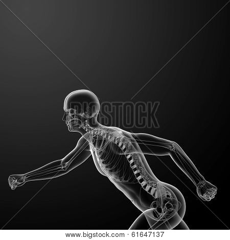 Running skeleton by X-rays