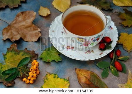 Autumnal Tea With Herbs