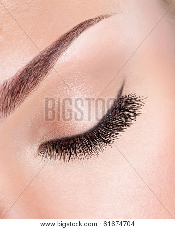 macro image of  long curly eyelashes