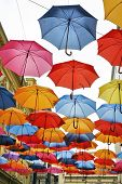 Umbrellas In Different Colors