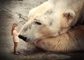 image of big-girls  - A little girl is petting a polar bear and the big wild animal is looking at her - JPG