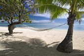 Shaded hammock under trees on tropical sandy beach by lagoon. Aitutaki
