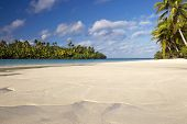Perfect sandy beach with palm trees and lagoon. One Foot Island, Aitutaki