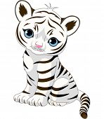 image of white tiger cub  - A cute character of sitting white tiger cub - JPG
