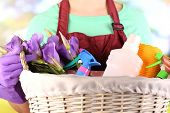 pic of spring-cleaning  - Housewife holding basket with cleaning equipment on bright background - JPG
