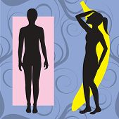 image of body shapes  - Vector Illustration of female body shape banana also known as ruler - JPG