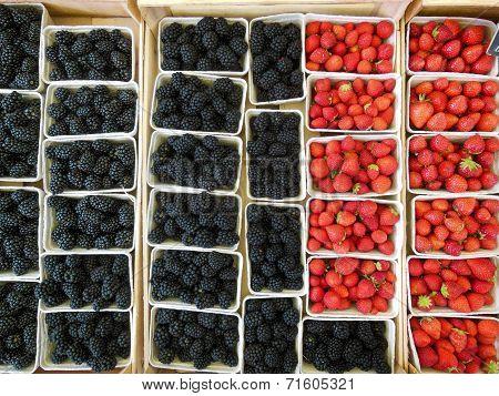 Berries at Market