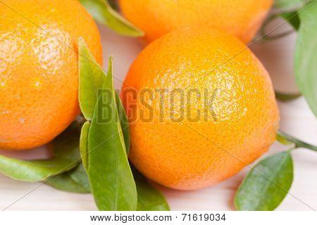 Fresh Satsumas