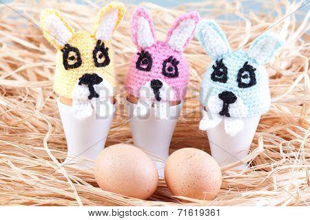 Rabbit Egg Warmers