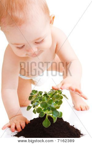Baby Touching Plant