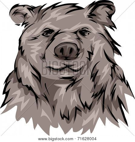 Illustration Featuring a Grizzly Bear