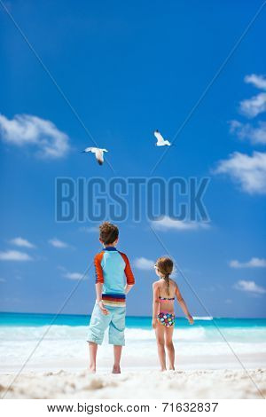 Two little kids and a couple of seagulls at beach