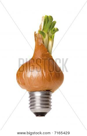 Onion Green Energy