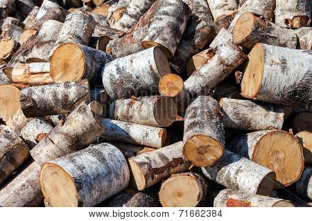 Dry Chopped Birch Firewood Logs In Pile. Nature Background