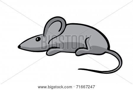 gray mouse, vector illustration, isolated on white
