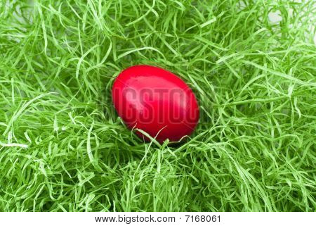 Red Egg In Green Grass