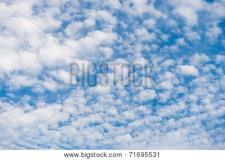 Cirrocumulus Cloud