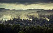 foto of deforestation  - Smoke in forest caused by deforestation - JPG