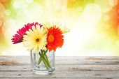 image of gerbera daisy  - Colorful gerbera flowers on wooden table with autumn sunny bokeh - JPG