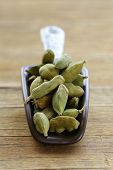image of cardamom  - green cardamom pods spice - aromatic seasoning for food
