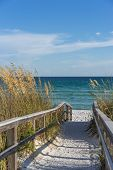 pic of gulf mexico  - Sandy boardwalk path to a snow white beach on the Gulf of Mexico with ripe sea oats in the dunes - JPG