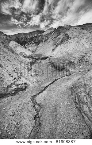 Rivulet In Death Valley