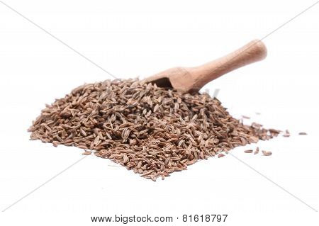 Caraway Seed In An Olive Wood Scoop And Scattered Isolated On White Background.