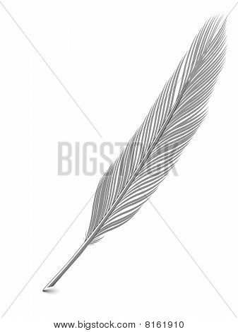 Silver Or Platinum Feather Quill Over White
