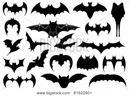 Illustration of different bats