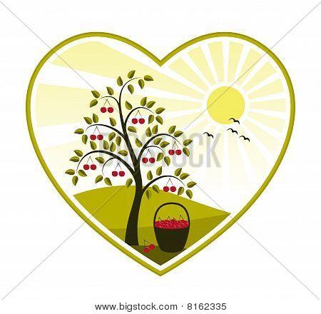 Kirschbaum in Herzen