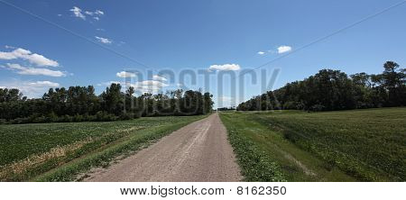 Rural Road Through the Countryside