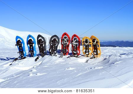 Snowshoes in the snow.