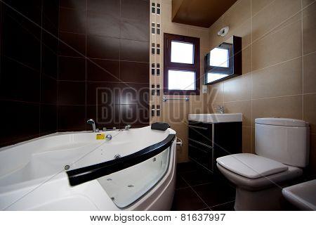 Batroom interior with jaquzi