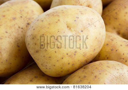 Detail of washed potatoes.