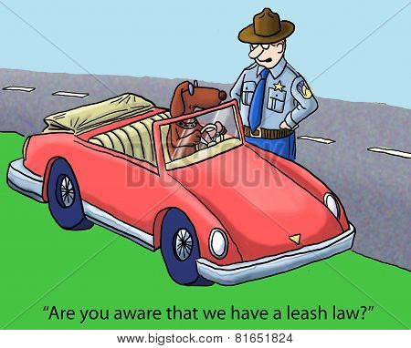 Leash Law In This State