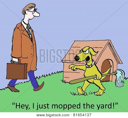 I Mopped The Yard