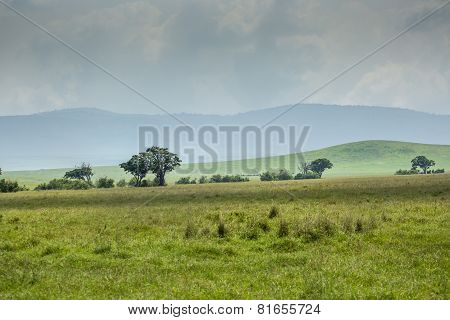 View Over Ngorongoro Crater, Tanzania, East Africa (unesco World Heritage Site)