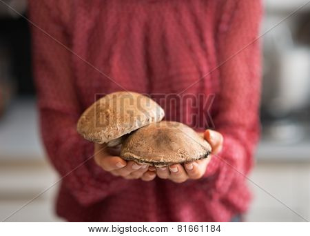 Closeup On Young Housewife Holding Mushrooms