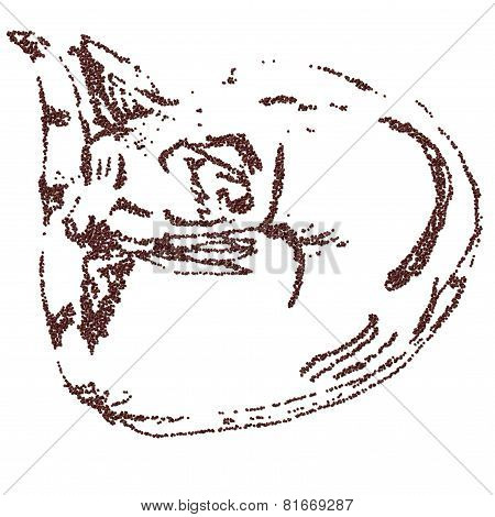 Sleeping cat curled up of coffee beans