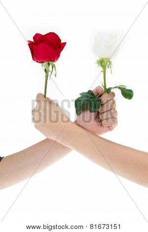 Hand Using Red Rose And White Rose To Make An Arm Wrestle