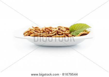 Healthy Mealworms On White Plate With Decoration