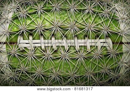Cactus Football