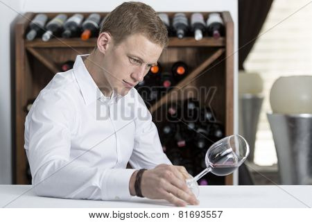 Young Man Examining A Wine Glass.